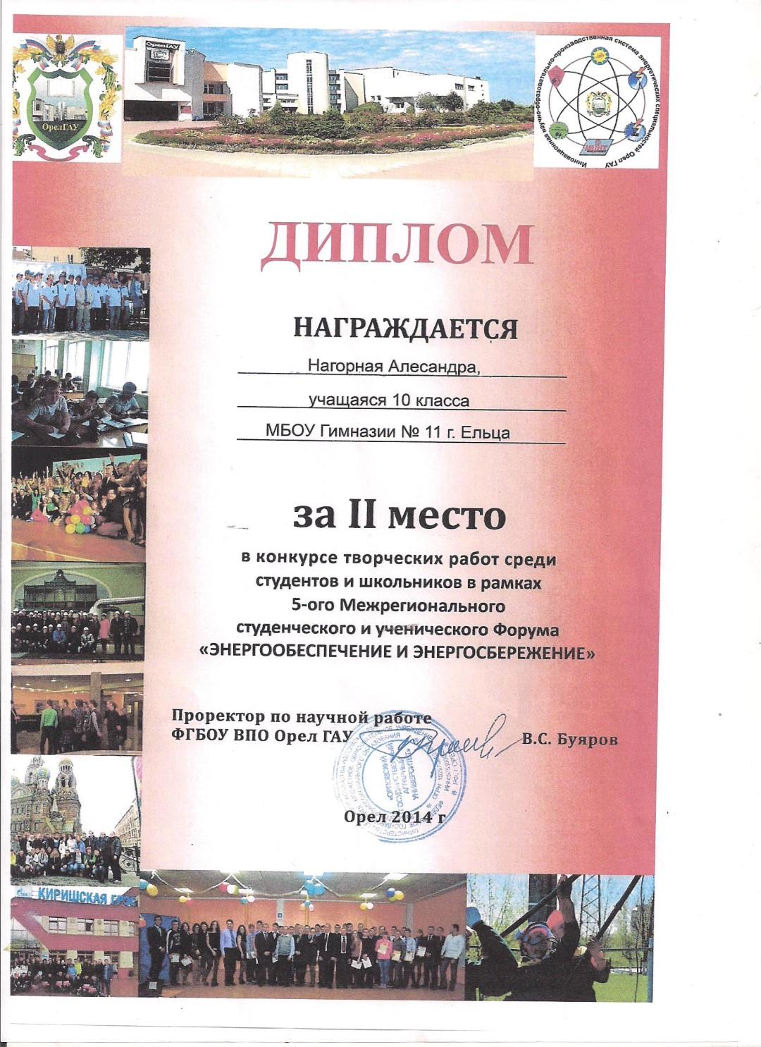 Нагорная Александра Диплом за 2 место в конкурсе творческих работ