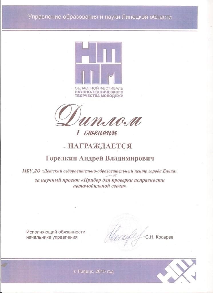 Горелкин Андрей Диплом 1 степени